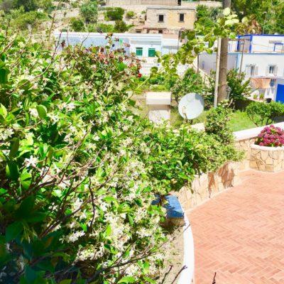 appartamenti_ponza_Pilato_le_Forna_porto_10